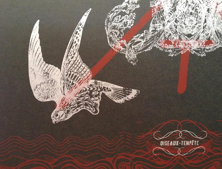 Oiseaux-Tempête Exclusive Black Silkscreen Print by Brian Cougar
