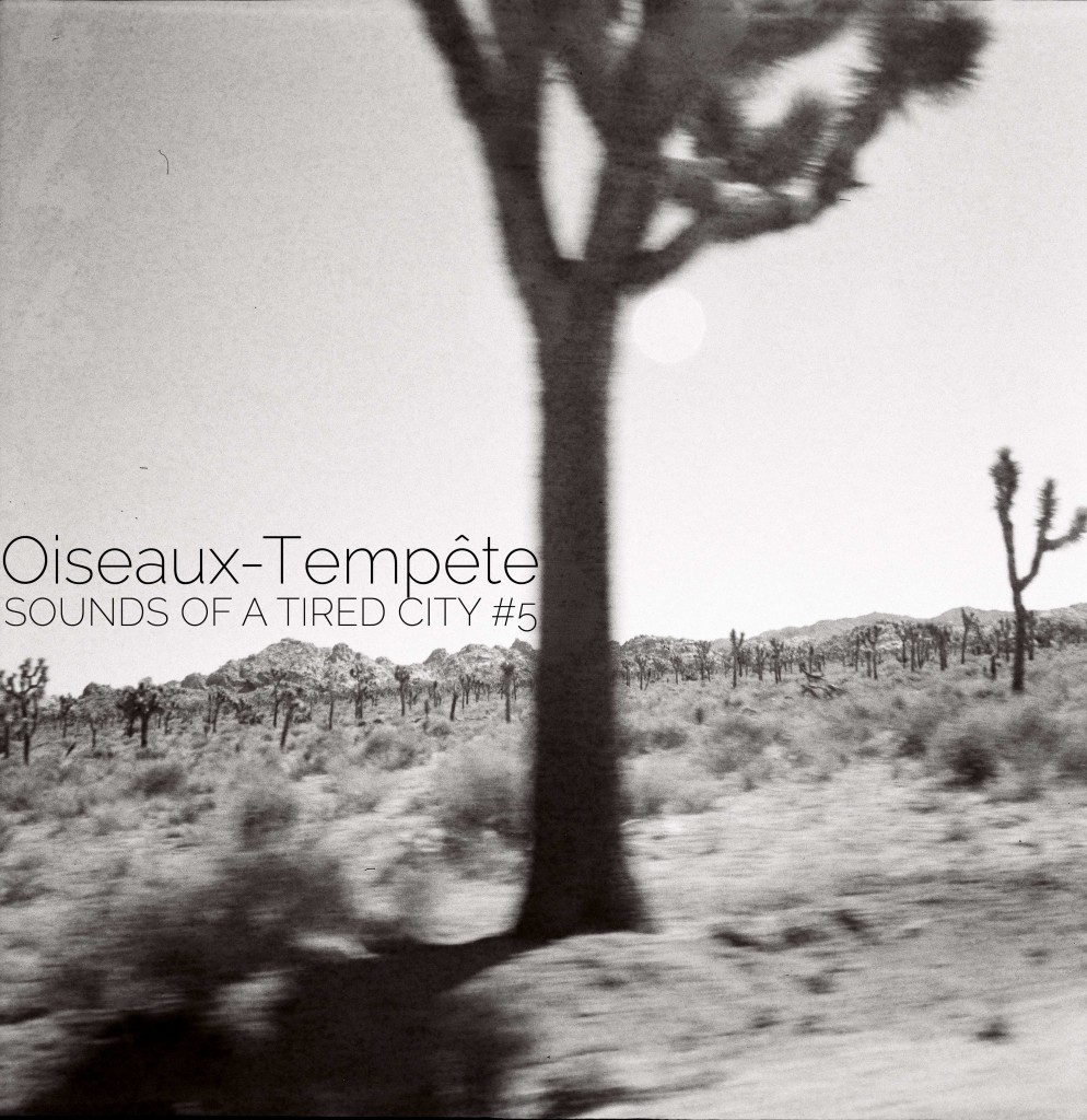 Sounds Of A Tired City #5: Oiseaux-Tempête