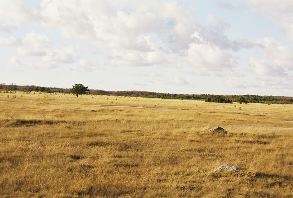 Noarootsi, Estonia (Photo: Joel Tammik)