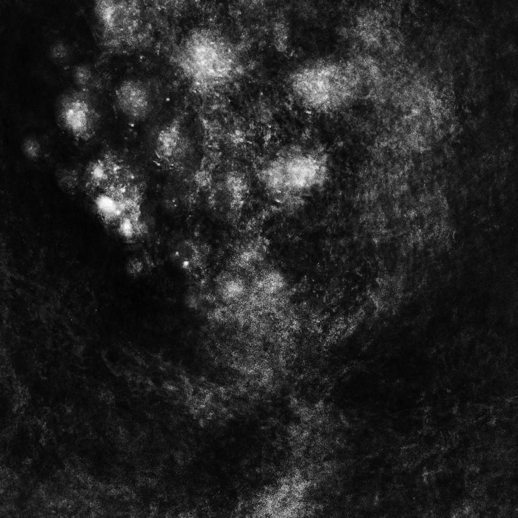 13. SAFFRONKEIRA – Synecdoche