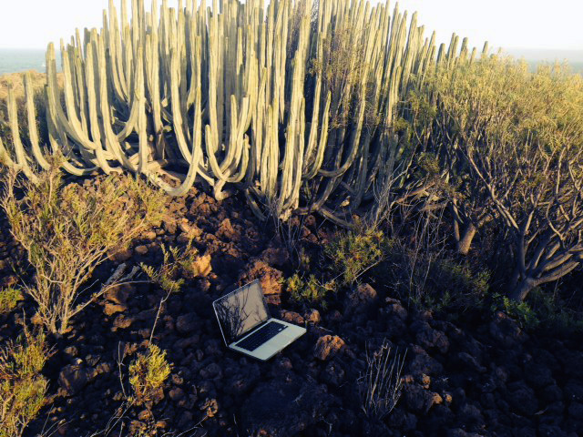 Here's a portrait of my laptop on the island.